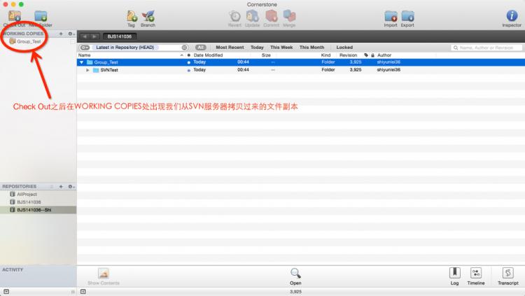 另外如果你想要使用SVN进⾏版本控制的话,那么需要把服务器上的文件Check Out到本地